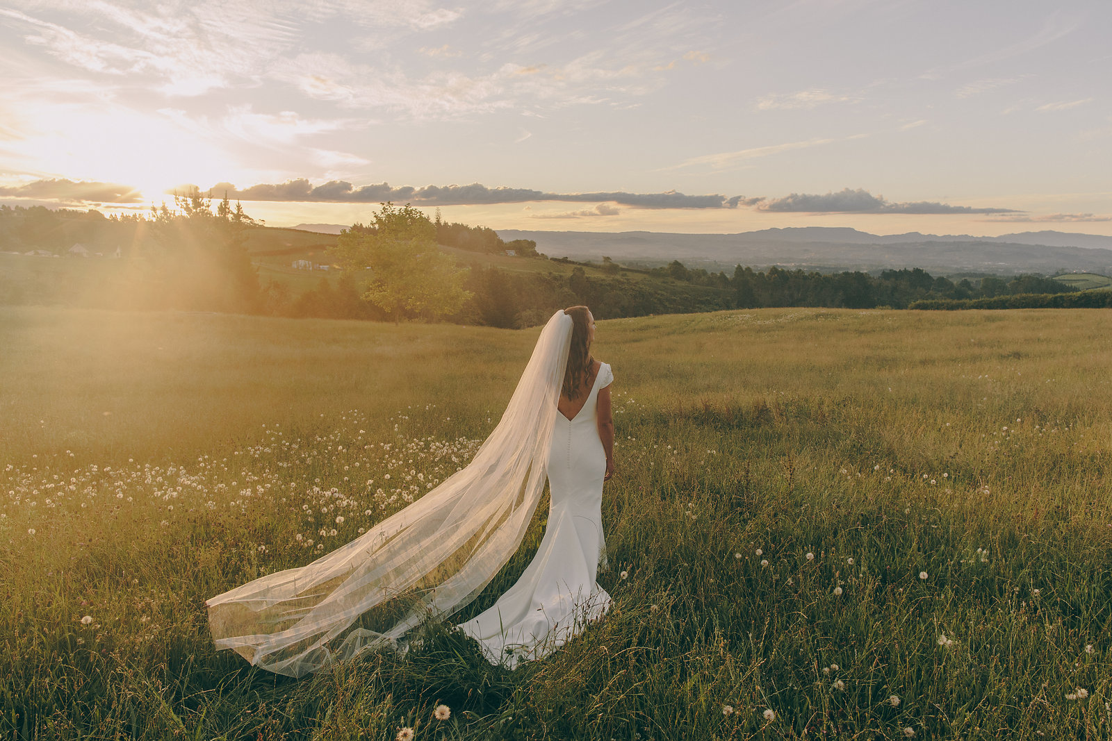 L'ORANGERIE BRIDE